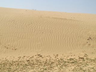 Agur dunes north.jpg